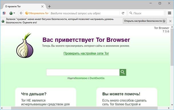 Первая страница браузера