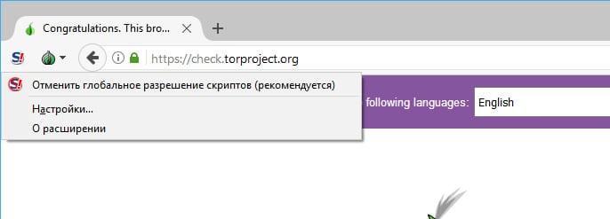 Включаем дополнение Noscript в Tor браузере
