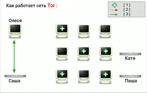 Как работает Tor браузер
