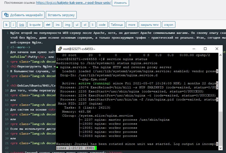 Nginx вывод команды nginx status